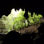 Taupo to Waitomo Caves: Self-guided Tour